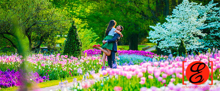 Lisha and Alvin Engagement at Longwood Gardens
